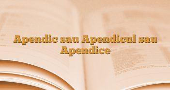 Apendic sau Apendicul sau Apendice
