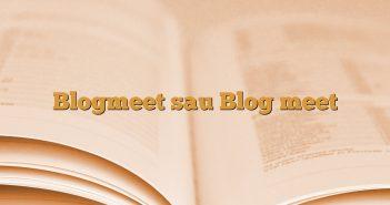 Blogmeet sau Blog meet