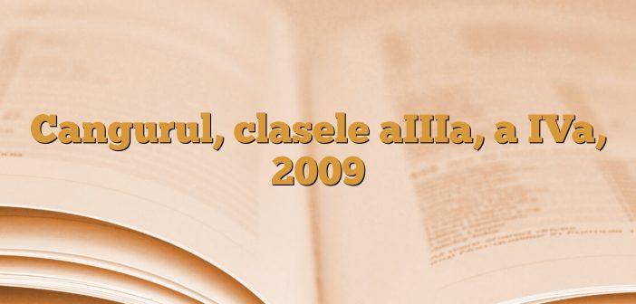 Cangurul, clasele aIIIa, a IVa, 2009