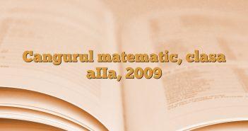 Cangurul matematic, clasa aIIa, 2009