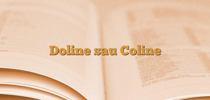 Doline sau Coline