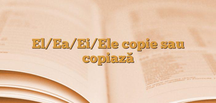 El/Ea/Ei/Ele copie sau copiază