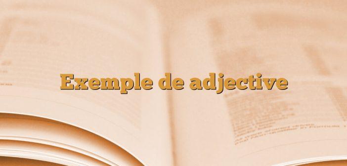 Exemple de adjective