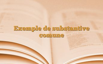 Exemple de substantive comune