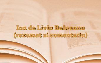 Ion de Liviu Rebreanu (rezumat si comentariu)