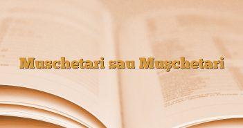 Muschetari sau Muşchetari