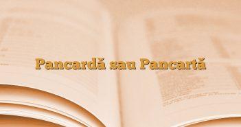 Pancardă sau Pancartă