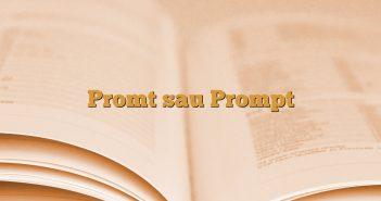 Promt sau Prompt
