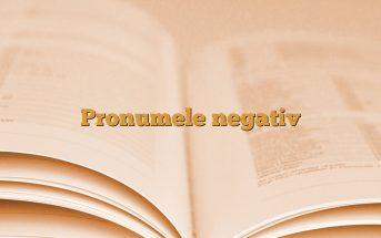 Pronumele negativ