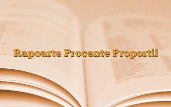 Rapoarte Procente Proportii