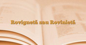 Rovignetă sau Rovinietă