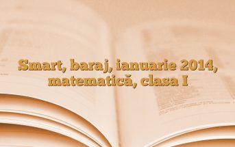 Smart, baraj, ianuarie 2014, matematică, clasa I