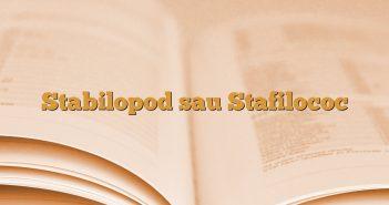 Stabilopod sau Stafilococ