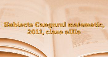 Subiecte Cangurul matematic, 2011, clasa aIIIa