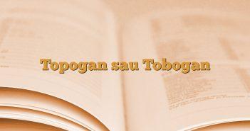 Topogan sau Tobogan