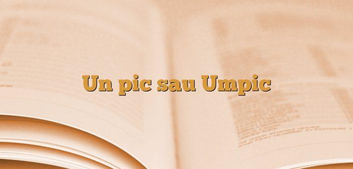 Un pic sau Umpic