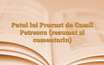 Patul lui Procust de Camil Petrescu (rezumat si comentariu)